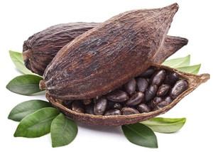 kakavova-zrna