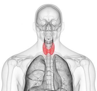 hipertiroidizam