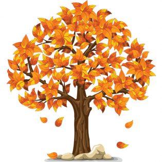 predmenstrualna faza - jesen
