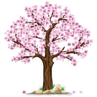 predovulacijska faza - proljeće