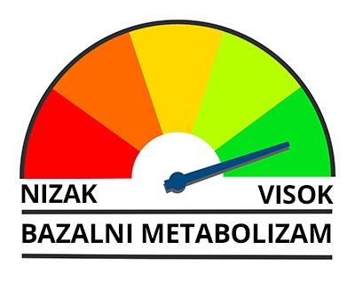 bazalni metabolizam